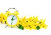 jarní koncept s hodinami a žluté květy