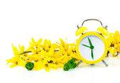 Jarní žlutá koncept s hodinami a květiny