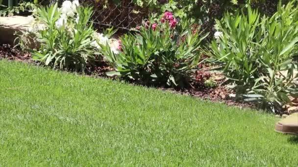 zahradnické činnosti - trávník řetězec strunová řezací hranice