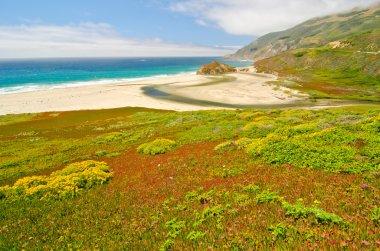 A beach at low tide at Big Sur, California