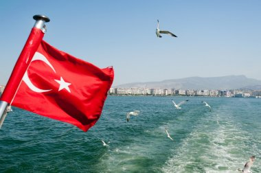 Turkey flag waving with Seagulls