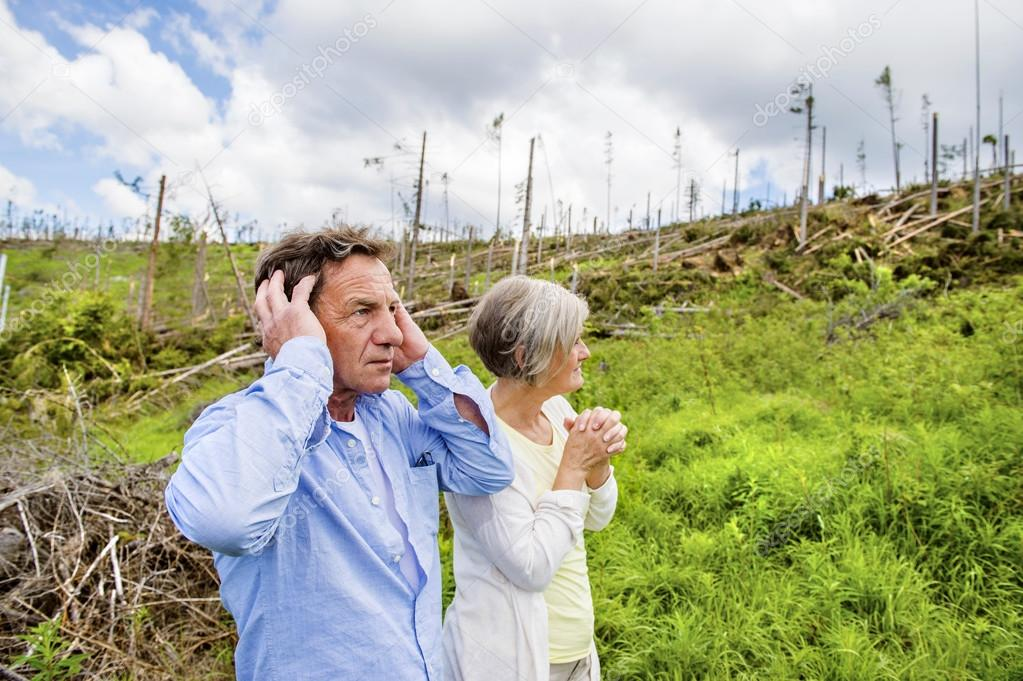 Senior couple at destroyed forest