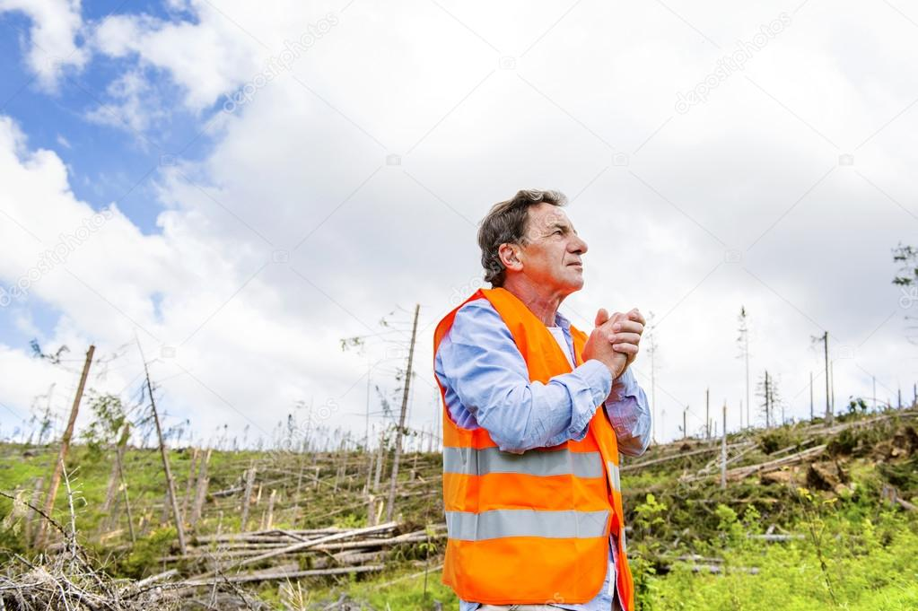 Rescue worker at destroyed forest