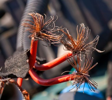 Red cable with copper fibers inside