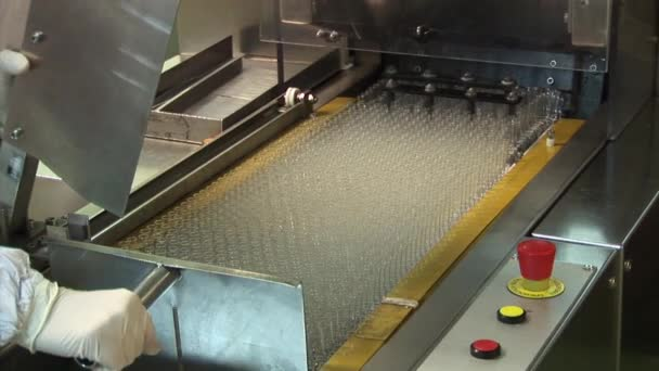 Placing on the conveyor glass