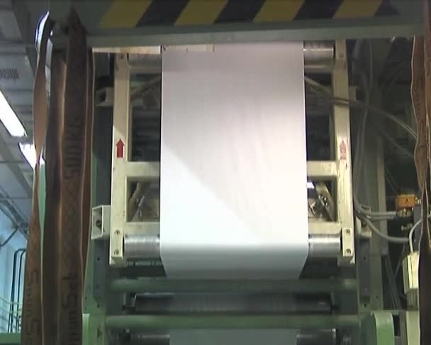 Plant for the production of paper