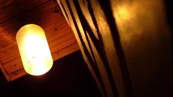 můry, létající kolem žárovky