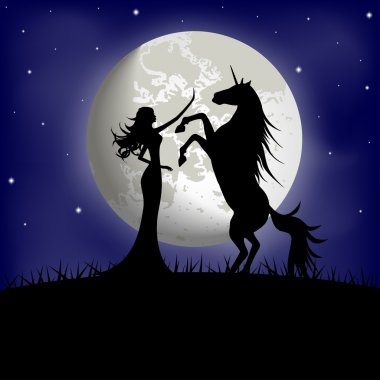 Silhouette of beautiful girl and unicorn on a background of the night sky