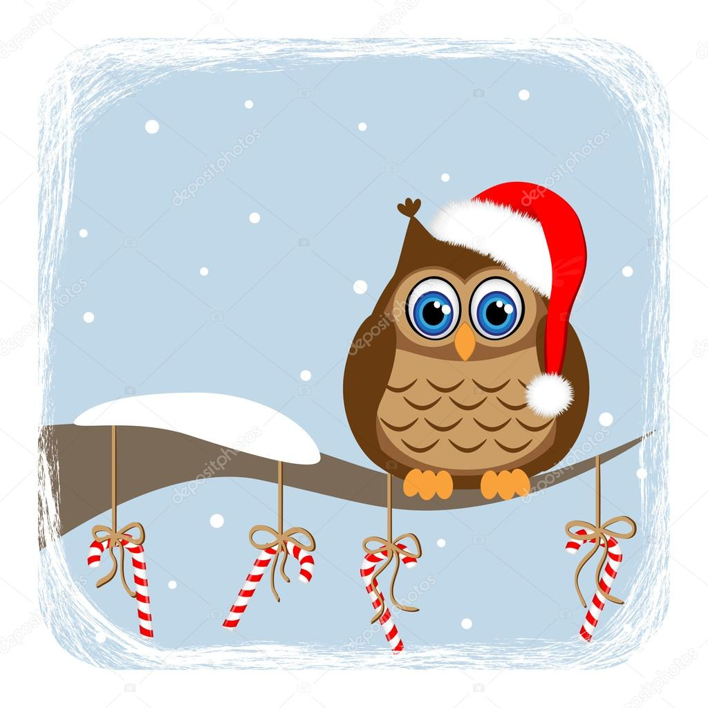 Owl on branch and candy-cane
