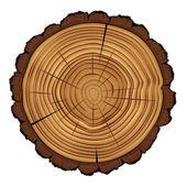 a fa keresztmetszete csonkot a elszigetelt fehér háttér, vektor eps 10 ábra.