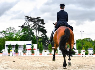 dressage horse and woman rider