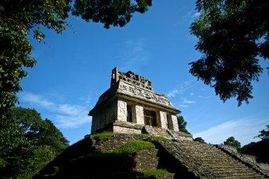 Mayan pyramid, the panorama of Chichen Itza