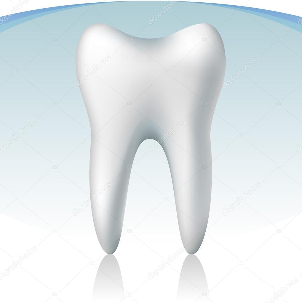 3D Zahn — Stockvektor © Helioshammer #18442425