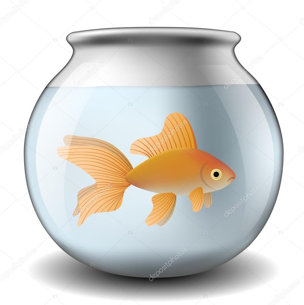 Pecera con peces de colores archivo im genes vectoriales for Peces de pecera