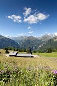 Giornata di sole delle Alpi, Carinzia, Austria
