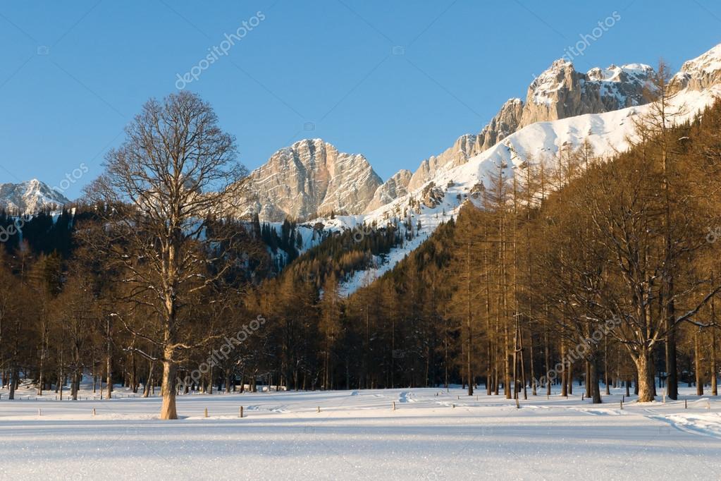 Paesaggio invernale sotto dachstein alpi austria foto for Disegni paesaggio invernale