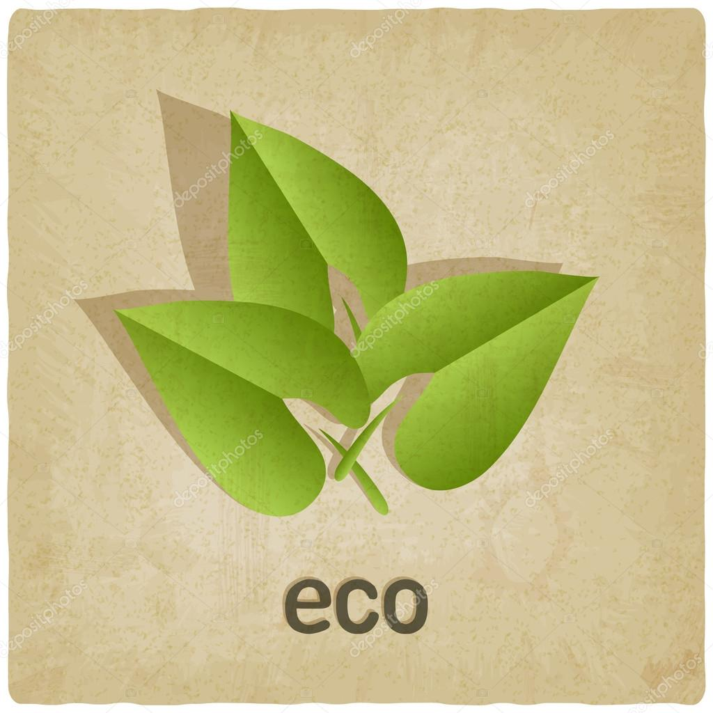 eco old background