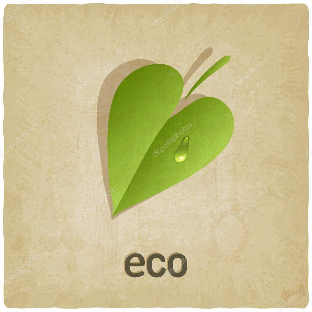 Leaf eco old background
