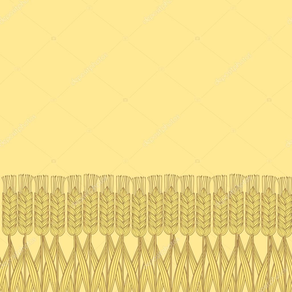 wheat harvest background