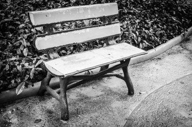 Bench in the garden park