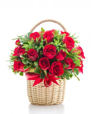 Rose basket isolated on white stock vector