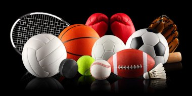 A set of different sport equipment and balls stock vector