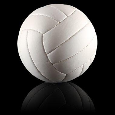 Volleyball black