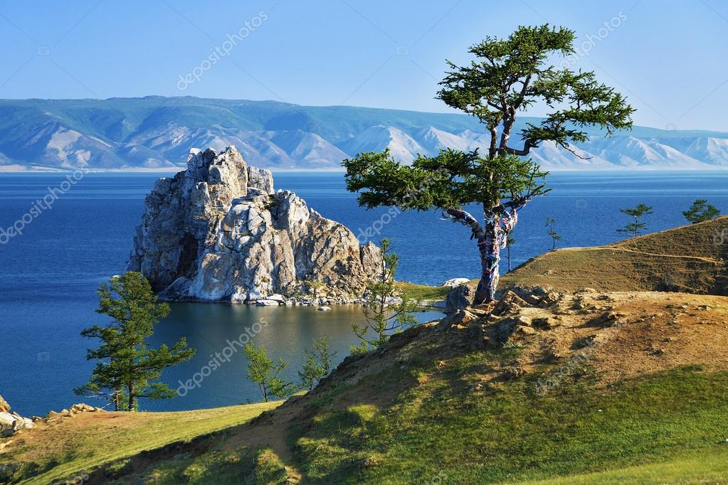 Tree of desires on Lake Baikal