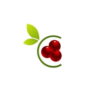 Organic Cherry Logo