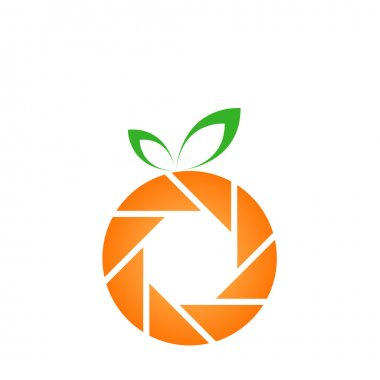 Orange shaped snapshot logo