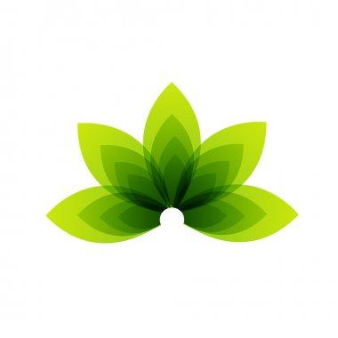 Organic Product stock vector
