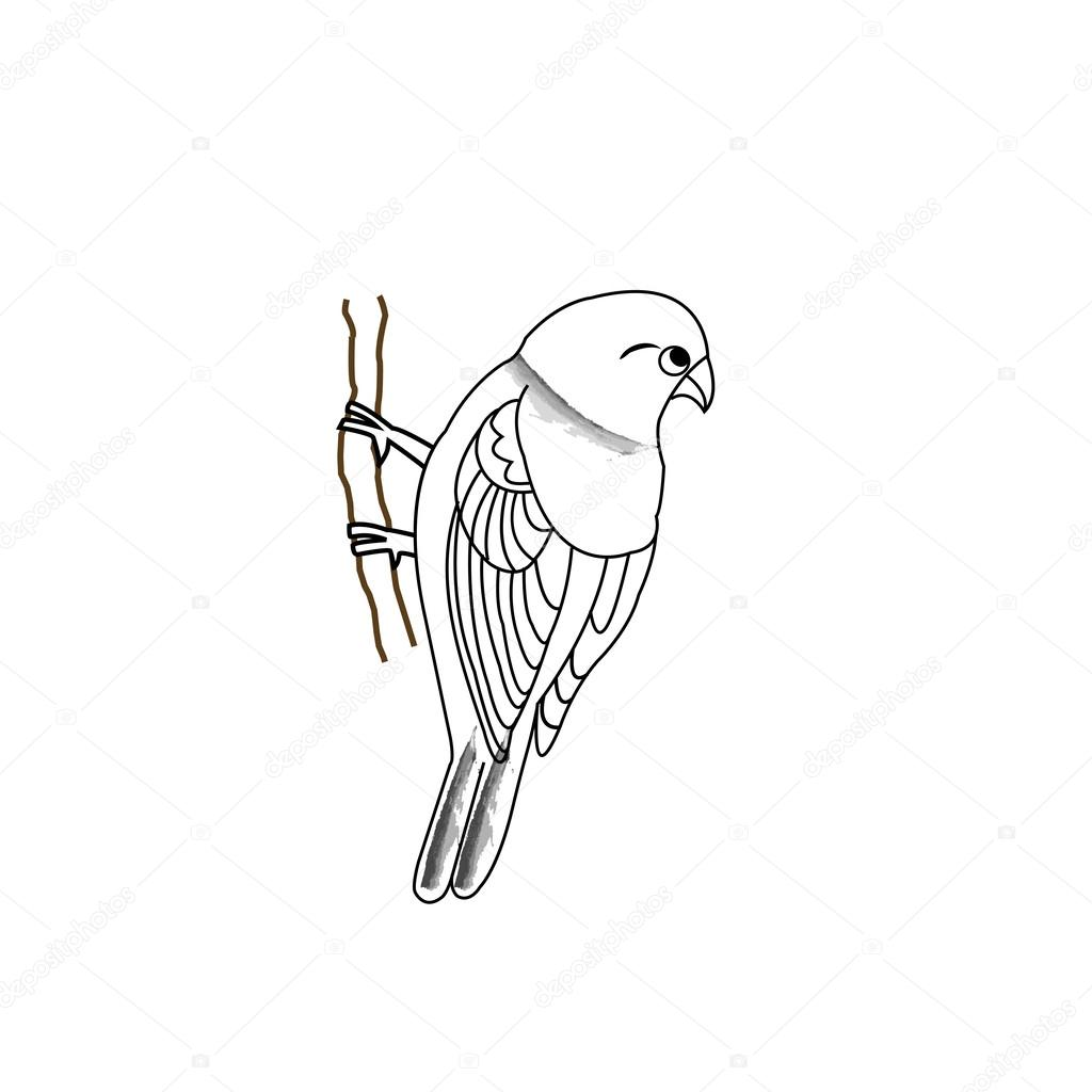 Hand drawn bird on a twig