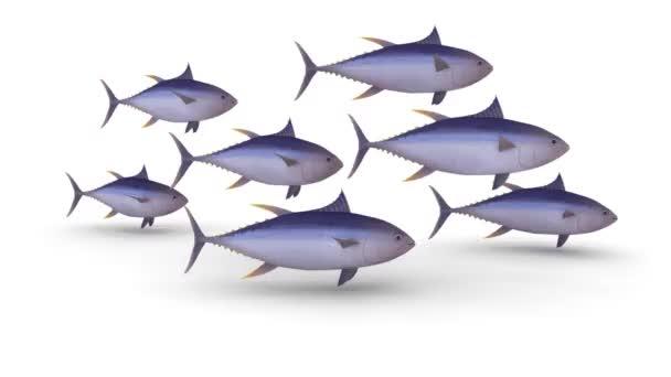 Gruppe von gelben Thunfischflossen auf weißem Hintergrund, 3D-Animationsschleife