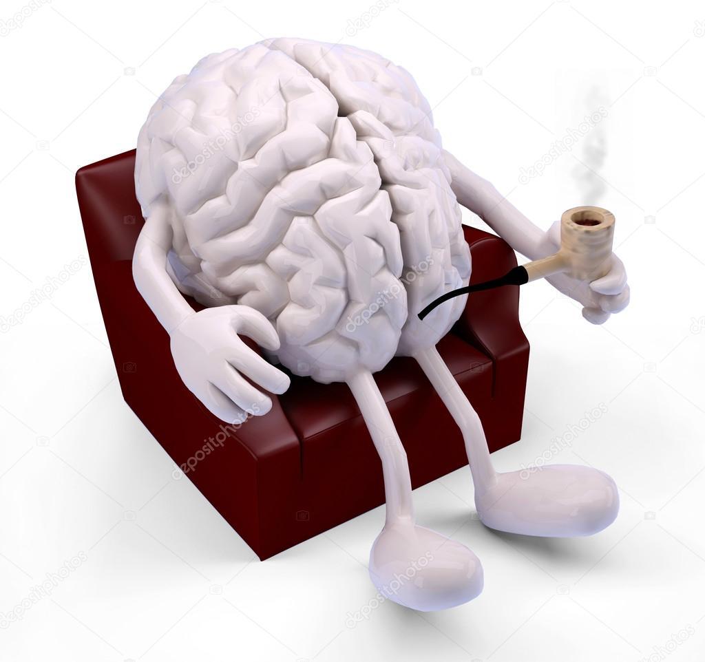 Cerebro Descansando En El Sill 243 N Fotos De Stock