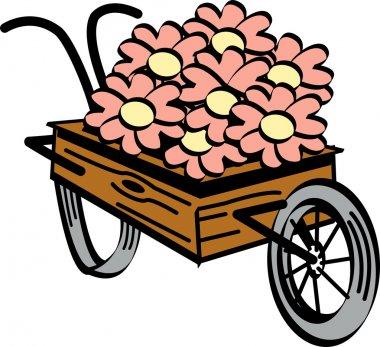 Old fashioned wooden wheelbarrow with pretty daisy flowers
