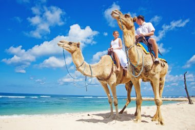 Camel ride on wedding day (focus on faces of people)