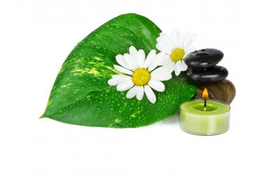 Spa concept. flowers with green leaf isolated on white
