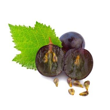 Grape in close up