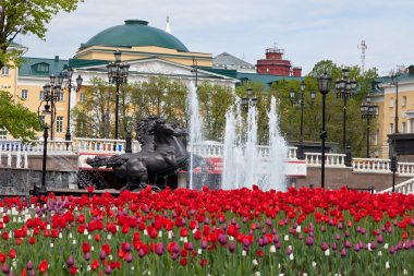 Alexander Garden and Moscow Kremlin in spring time