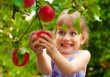 Girl removes the apple from the tree