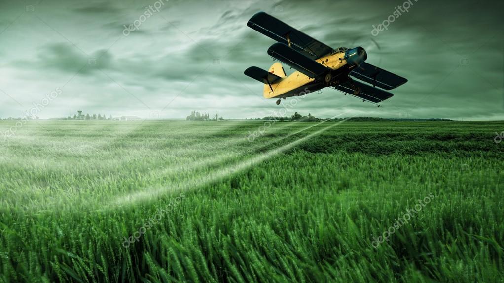 Plane on field