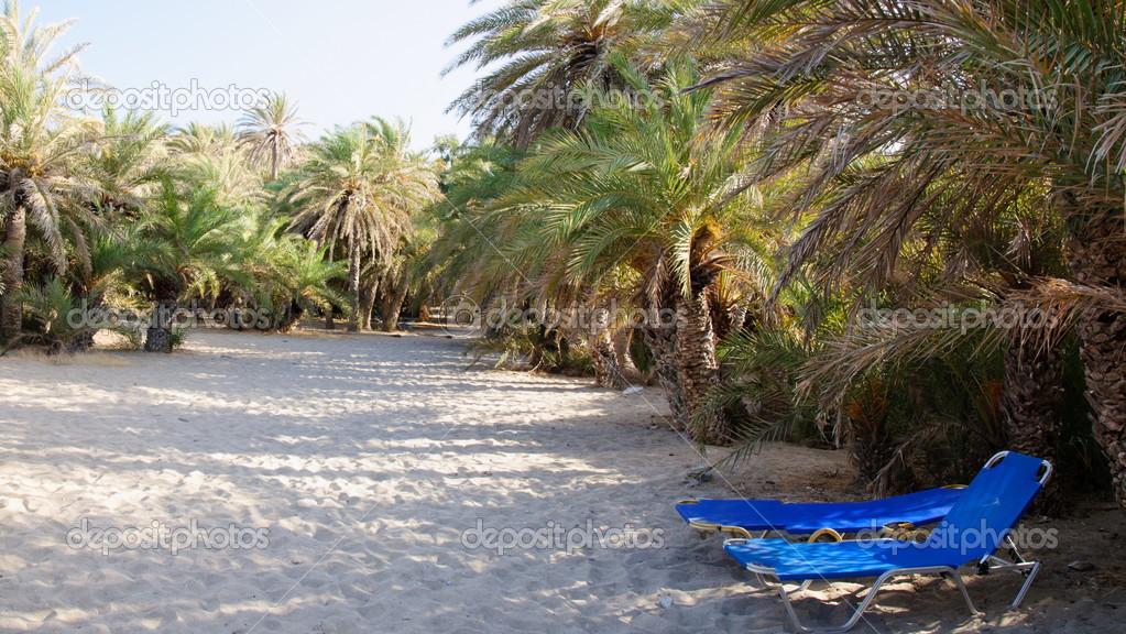 Bildergebnis für Palmenstrand von Vai