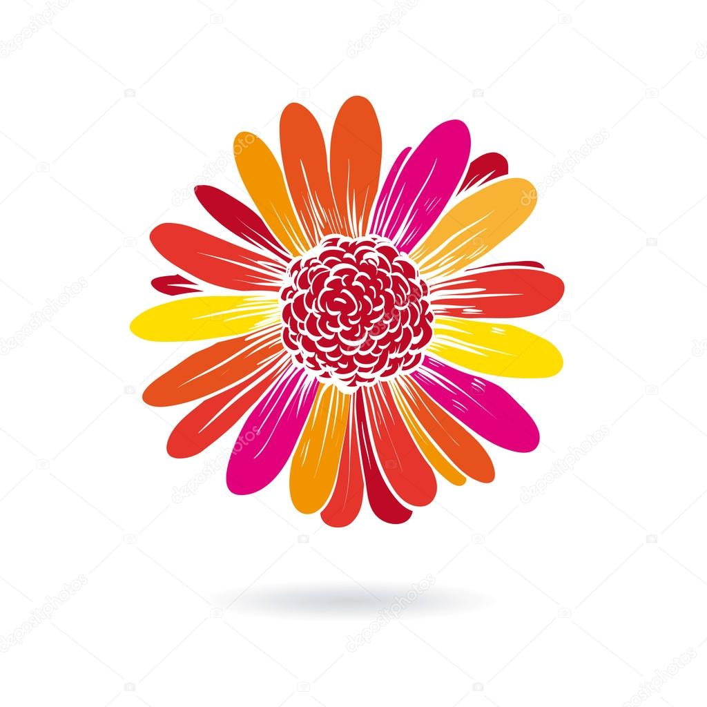 Gerber flower vector illustration