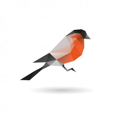 Bullfinch abstract isolated on a white backgrounds