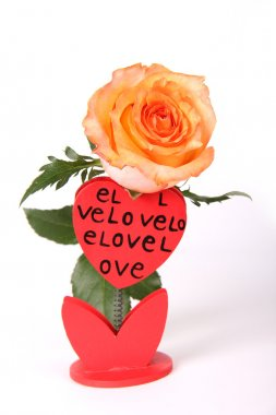 Rose with Love gift card