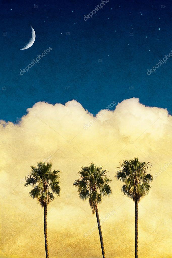 Moon Palms