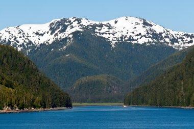 Inside Passage Along the Alaskan Mountain Range