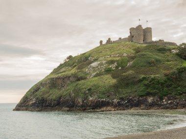 """Картина, постер, плакат, фотообои """"замок кричет в северном уэльсе природа"""", артикул 48317831"""