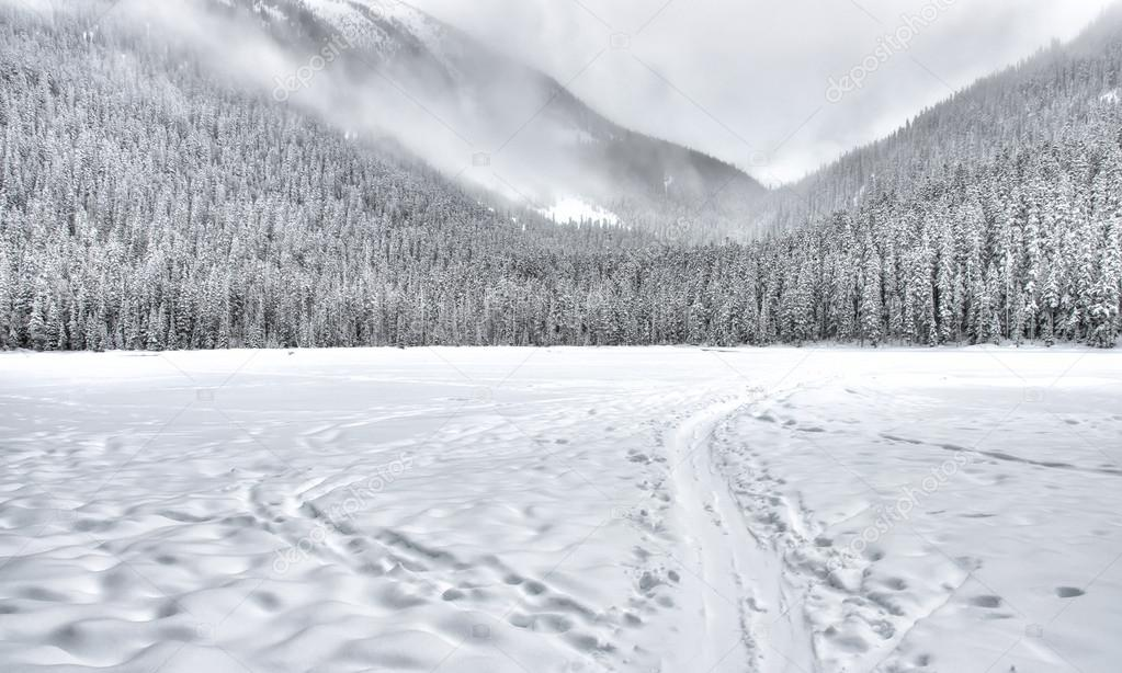 Frozen Lake with Sled Trail in Mountains