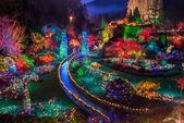 Butchart zahrady barevné vánoční osvětlení